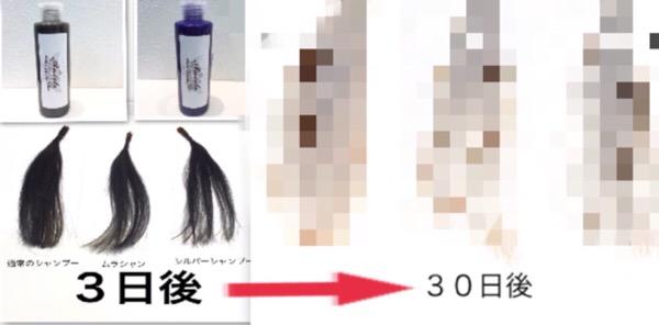 【ガチ検証!】ムラサキシャンプーは本当に外国人風カラーを色持ちさせるのか30日間試してみた!