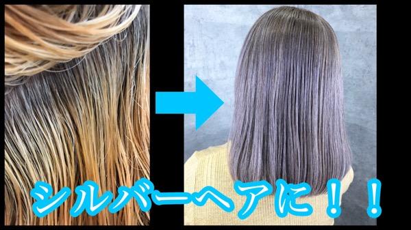 白髪が多い方必見のアールブリーチを使ったシルバーヘアの作り方